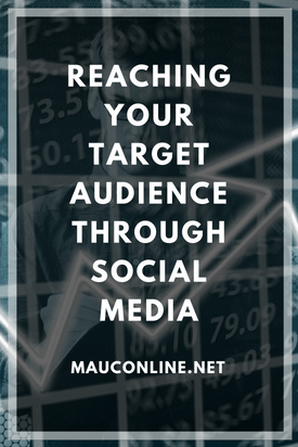 Reaching Your Target Audience Through Social Media-PINS