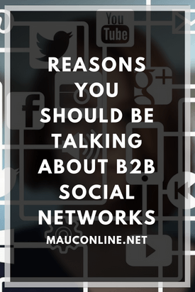 Why Talk About B2B Social Networks-PIN