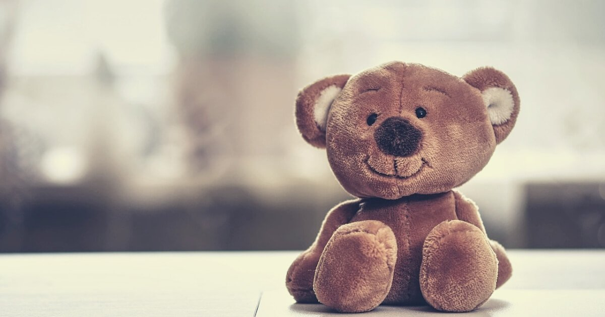cute teddy bear on table - selection stage