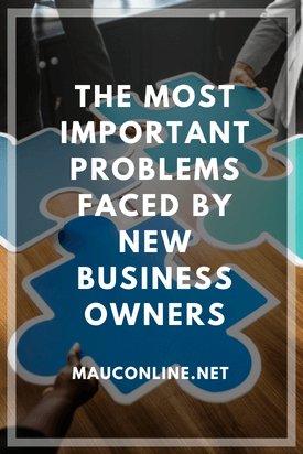 The Most Important Problems Faced By New Business Owners-PINS