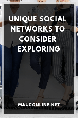 Unique Social Networks to Consider Exploring-PIN